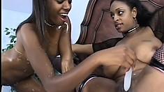 Naughty sex goddess loves to lick a creamy ebony velvet purse
