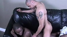 Black gays suck dick, drill some ass and then jerk off together