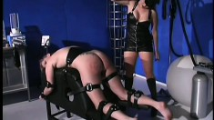 Amazing babe in black outfit is stimulated and humiliated by her mistress