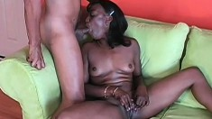 Chocolate honey with sexy tits Kelly knows her way around a black dick