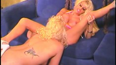 Stacked blonde lesbians relish the sweet taste of each other's pussies