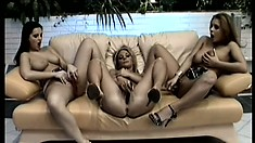 Three lesbian babes get together on the couch and satisfy each other's desires