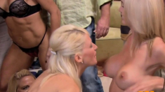 Sexual Fantasies Are Coming True With This Hot Swinger Orgy